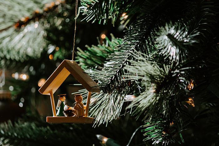 Weihnachtsbaum Natürlich.Wer Hat Den Nachhaltigsten Weihnachtsbaum Green Friday Green Friday